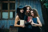 Постер, плакат: three vintage women as witches