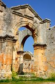 pic of euphrat  - ruins of historic simeonis abbey in syria - JPG