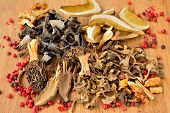 Постер, плакат: Various Dried Mushrooms