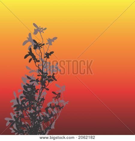 Floral Bright Bg