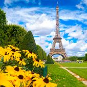 The Eiffel Tower and colorful yellow flowers on a beautiful summer day in Paris poster