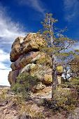 Chiricahua National Park, Az, Landscape poster