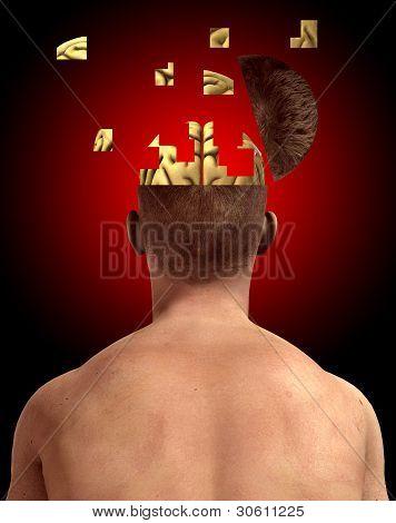 Brain In Bits