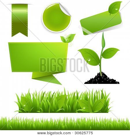 Green Eco Set, Isolated On White Background, Vector Background