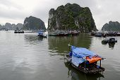 Fisherman Boats In Halong Bay (ha Long Bay) - Unesco World Heritage Site And Popular Travel Destinat poster