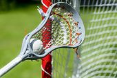 Abstract View Of A Lacrosse Stick Scooping Up A Ball poster