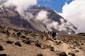 stock photo of kilimanjaro  - A line of backpackers following the trail to the mountain summit - JPG