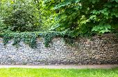 Stone Wall Covered With Greenery. Green Thickets Behind The Wall. The Path Along The Wall Among The  poster