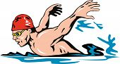 stock photo of breast-stroke  - Vector art on the sport of swimming - JPG