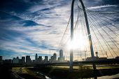 Dallas Texas Margaret Hung Hill Bridge Spanning Across The Trinity River With Downtown Skyline Citys poster