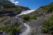 Exit Glacier In Kenai Fjords National Park In Alaska, United States poster