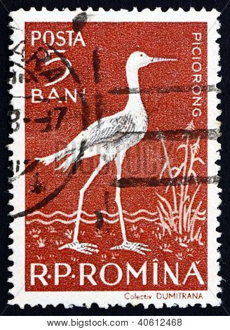 Postage stamp Romania 1957 Black-winged Stilt, Wader Bird