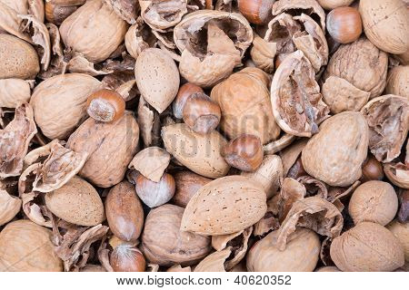 Pile Of Several Nuts And Nutshells