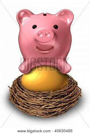 Savings Nest Egg