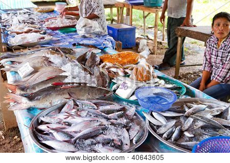 KHAO LAK, THAILAND - NOV 05: Unidentified woman selling fish on the local market in Khao Lak. This market is also tourist attraction in Phang Nga province, Thailand on Nov.05, 2012.