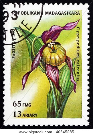 Postage stamp Malagasy 1993 Cypripedium Calceolus, Orchid