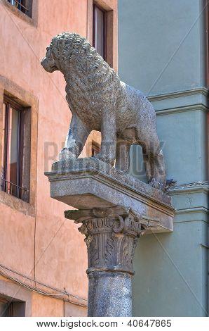 Town hall building. Viterbo. Lazio. Italy.