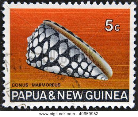 PAPUA NEW GUINEA - CIRCA 1969: A stamp printed in Papua New Guinea shows shell Conus Marmoreus circa