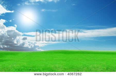 Sunny Weather On A Green Field