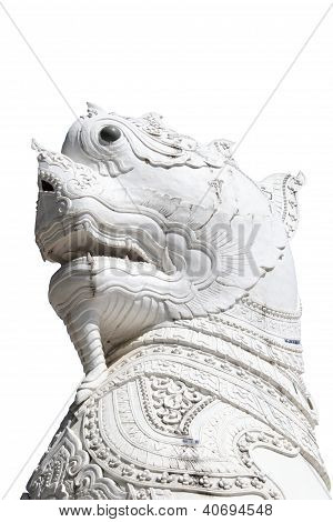 White Singha On Isolated Background