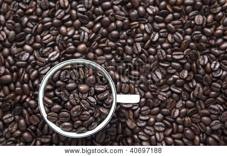 Coffe Cup Beans