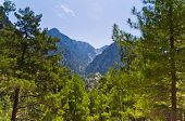 foto of samaria  - Mountain trails thru Samaria gorge toward the Lybian sea - JPG