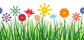 picture of girlie  - A colorful border depicting flowers in a field of grass - JPG