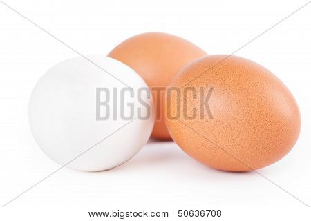 Three Eggs On White Background