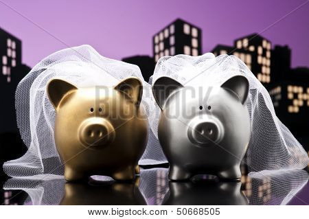 Metropolis City Lesbian Piggy Bank Civil Union