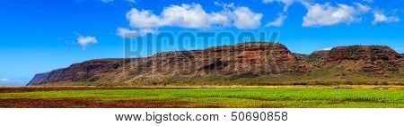 Kauai Farmland