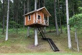 stock photo of unique landscape  - Remote wooden tree house in the forest - JPG