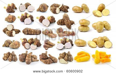 Taro Root And Potato Isolated On White Background