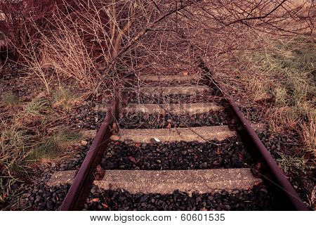 Rural Disused Railway Track