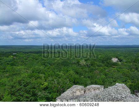 Temple Ruins At Calakmul