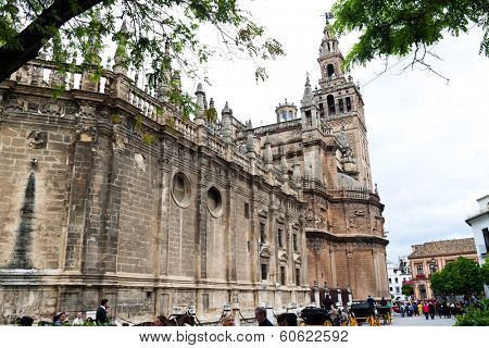 spain, andalusia. the cathedral