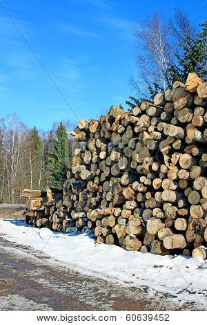 Logs In The Logging In Russia At Winter