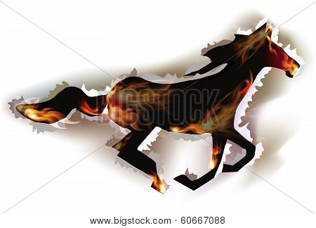 Ripped paper collection and flames, Horse