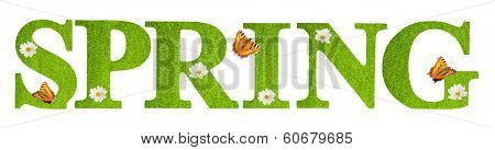 Spring letters covered in grass texture with butterflies on a white background