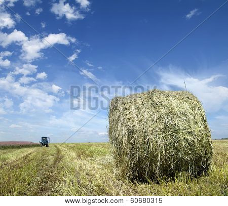 Farmers field full of hay bales