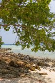 picture of koh phi-phi  - Beach at Koh Phi Phi Krabi Thailand - JPG