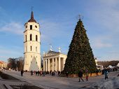 City Christmas Tree, Vilnius, Lithuania