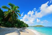stock photo of virgin  - Colorful beach with coconut tree and blue sky in St John - JPG