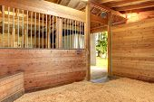 picture of stall  - View of the clean horse barn stall with an open door - JPG