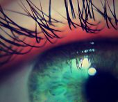 picture of extreme close-up  - a super close up macro of an eye - JPG