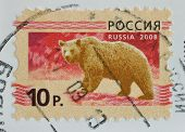 Russia Postage Stamp Shows Brown Bear