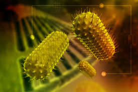 picture of prophase  - Illustration of bacteria cells in attractive color background - JPG