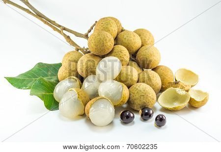 Organic Fresh Longan Isolated Picture  On White Background
