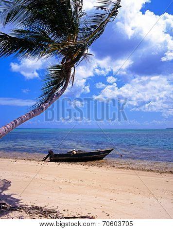 Fishing boat on shoreline, Tobago.