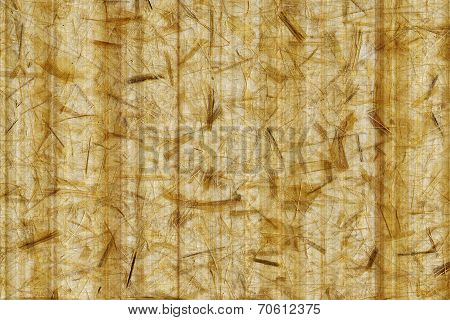 Paper Bamboo Bacground - Nature Texture Tone