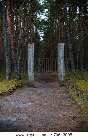 Curonian Spit. Entrance to the Dancing forest.